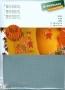Канва Аида 14, цвет 594 в упаковке