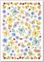 """Войлочное полотно с напечатанным рисунком """"Цветы  и бабочки"""""""