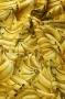 """Ткань """"Бананы"""""""